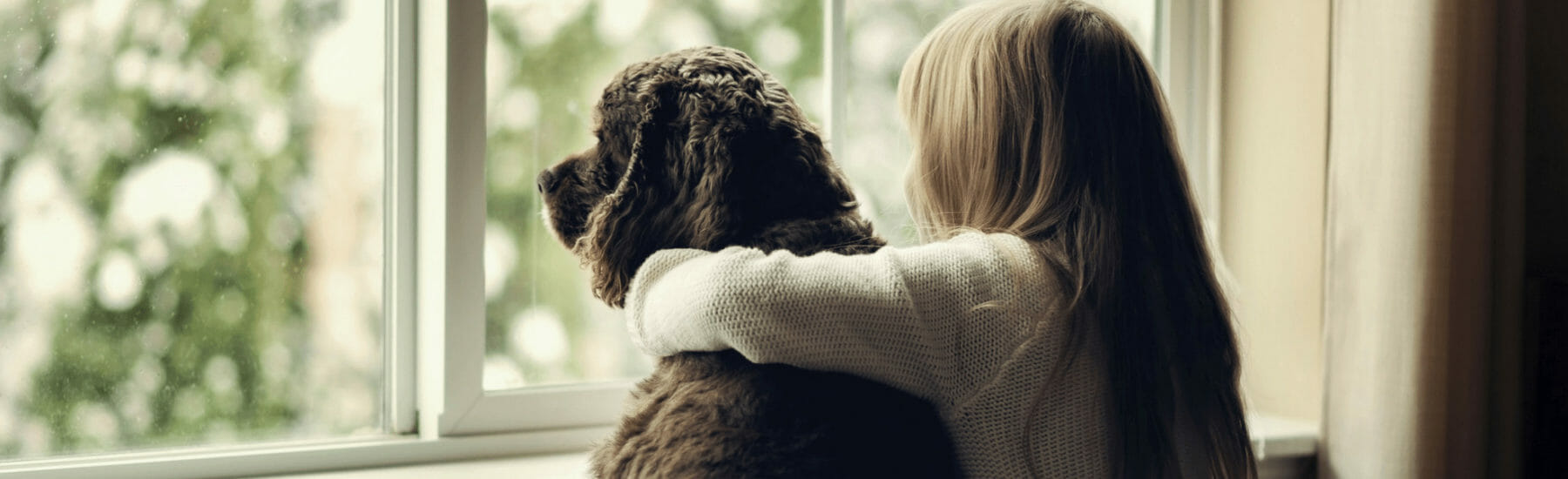 Owner and black dog looking out of the window