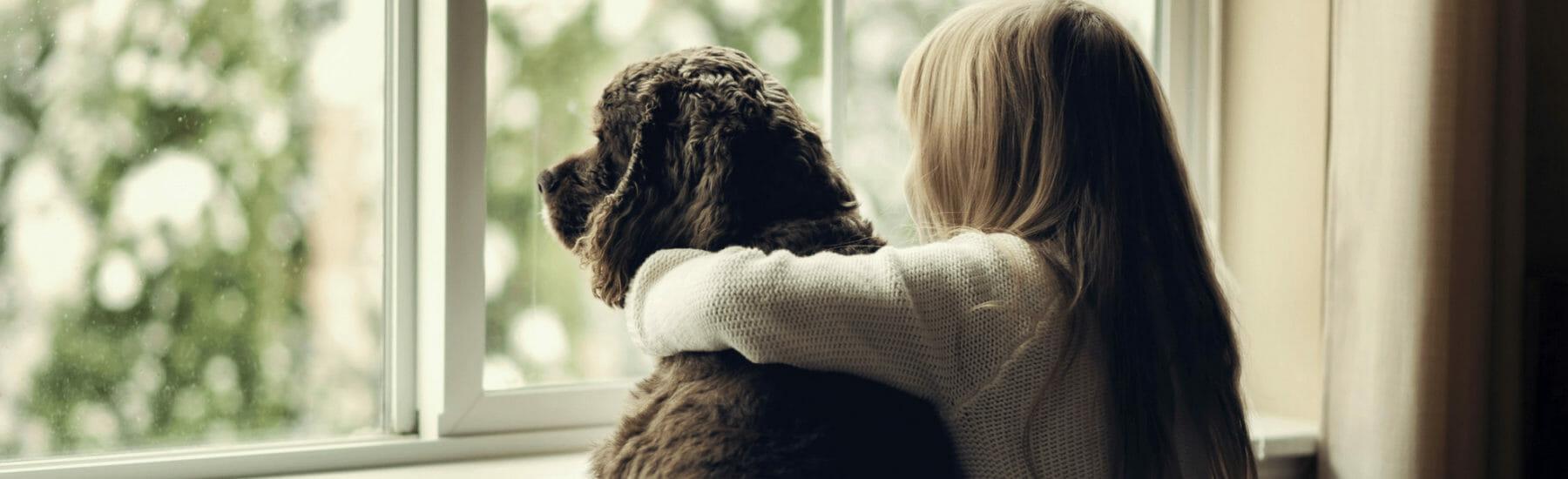 Propriétaire et chien noir regardant par la fenêtre